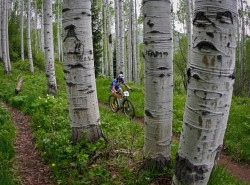 Riding through the aspens at the Teva Games